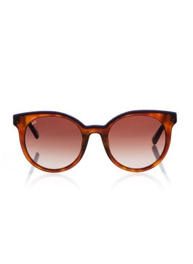 Web Güneş Gözlüğü Renksiz